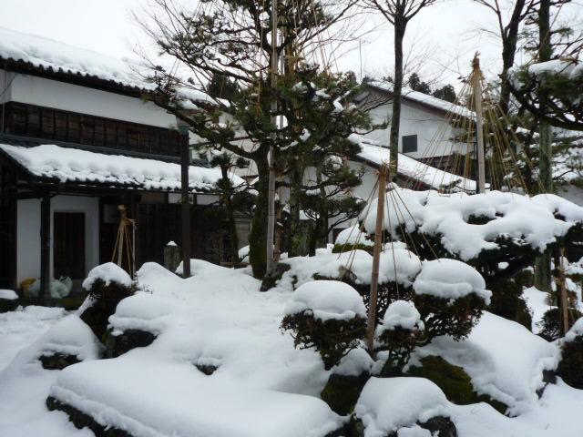 雪景色 松